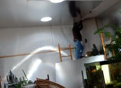 Ceiling insulaton going upDSCN0370