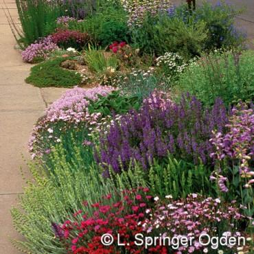 Pre-Planted Gardens