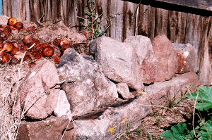 I piled these stones to make a new compost enclosure on 9/29/04, the day before the first seizure.