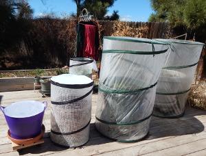 3 Container Garden Sizes 300 DSCN0912