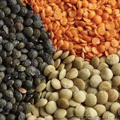 Protein_Lentils175